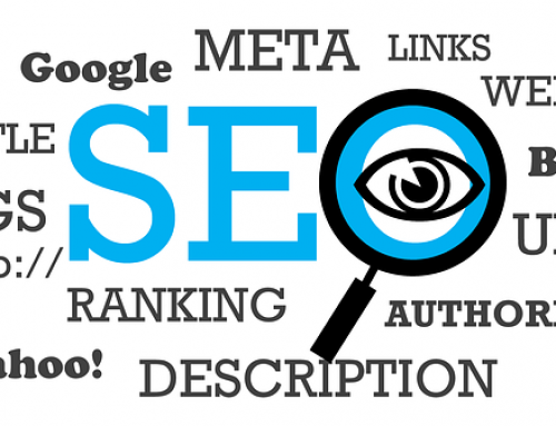 Top Search Engine Optimization Guide!